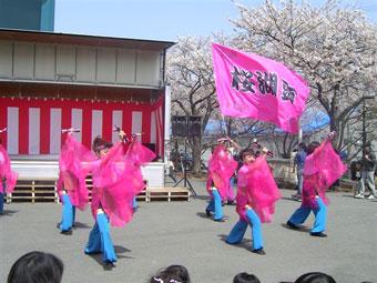 静岡県-桜湖頭様(よさこい旗)