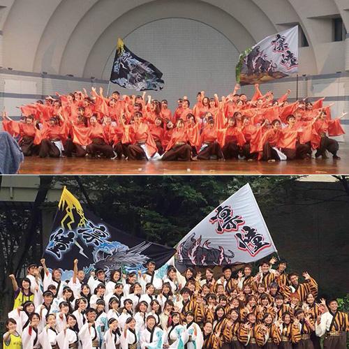 大阪教育大学YOSAKOIソーランサークル凛憧のよさこい旗お写真