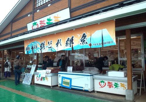 平塚市漁業協同組合様の大漁旗柄暖簾お写真