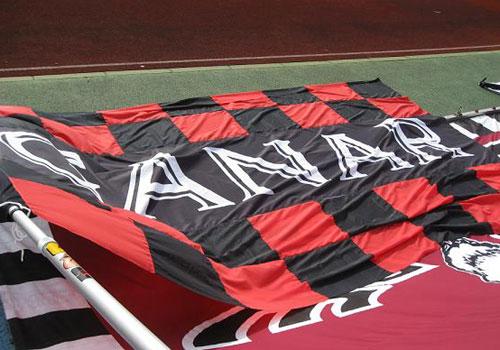 兵庫県大塚様の応援旗の写真