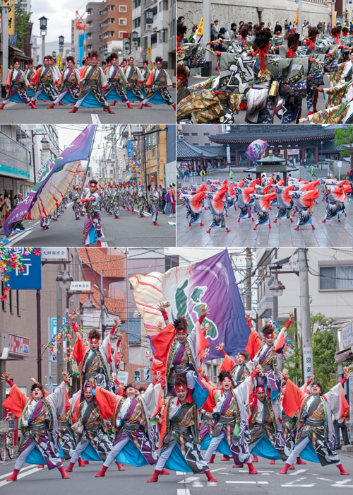 ダンスパフォーマンス集団迫様の演舞写真