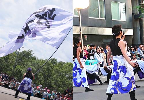 紫仁様のよさこい衣装・旗のお写真2