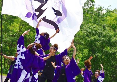紫仁様のよさこい衣装・旗のお写真