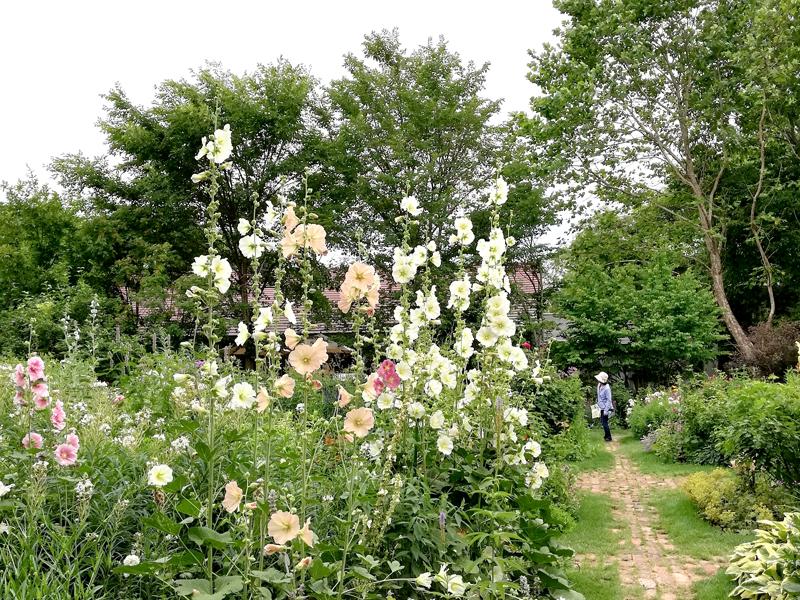 上野ファーム ガーデン
