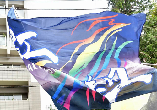 よさこい踊り隊虹組様のお写真3