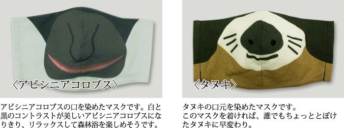 マスク アビシニアコロブスとタヌキ